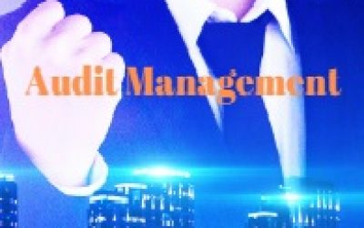 Audit Mgmt-190x150